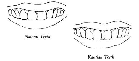 platonic vs. kantian