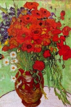 red poppies & daisies