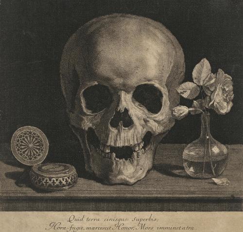 the skull jean morin